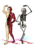 動く人体模型・骨格標本.jpg